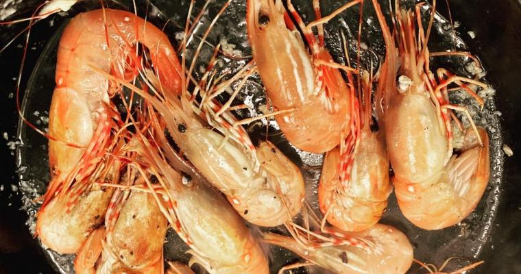 Scary Delicious Spot Prawn Stock